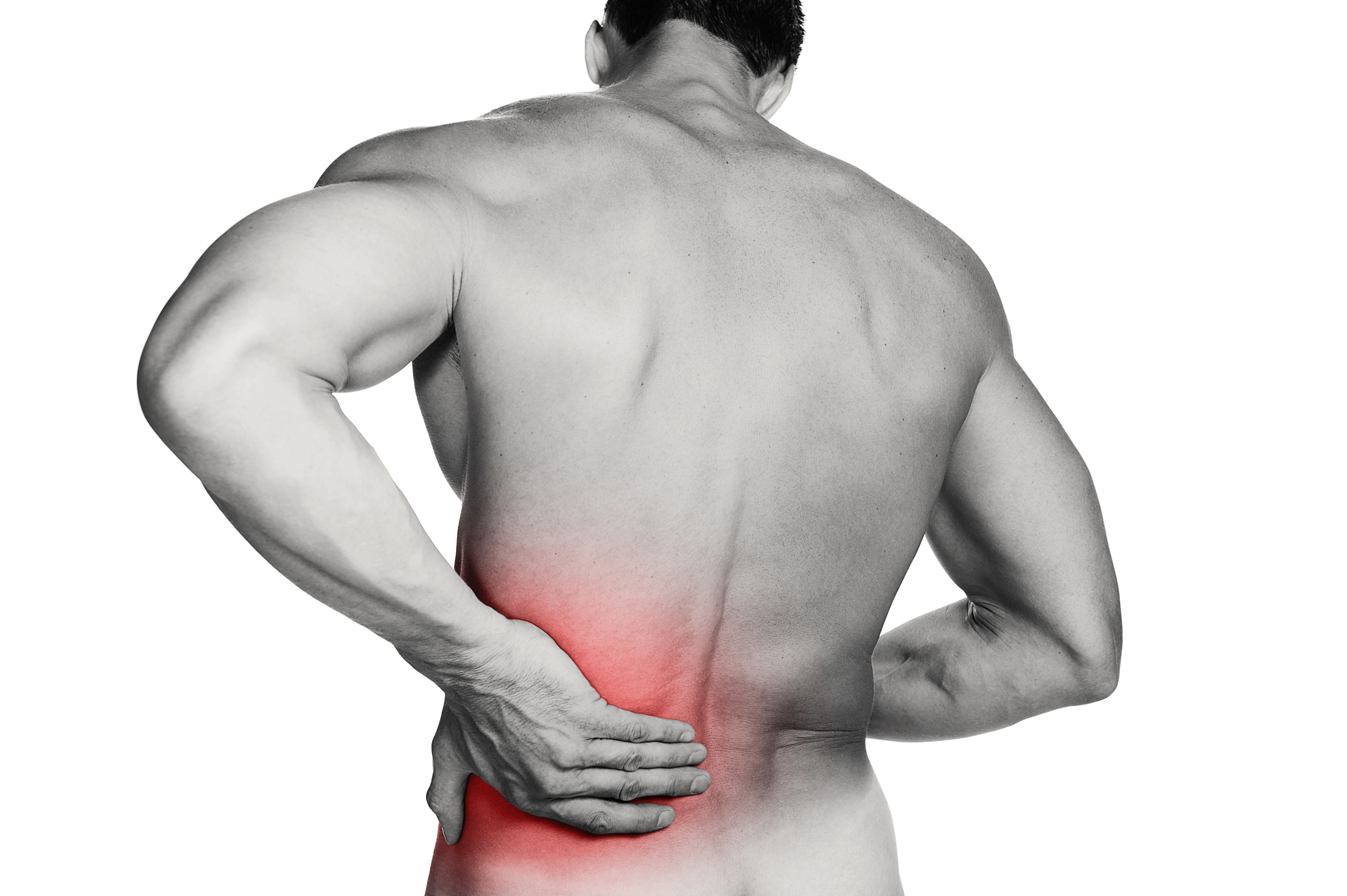 Visit Your Chiropractor If You Have Been In An Accident