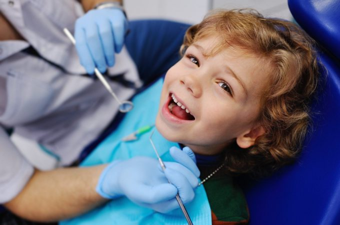 Professional Dentist: Reasons Why You and your Family Needs One