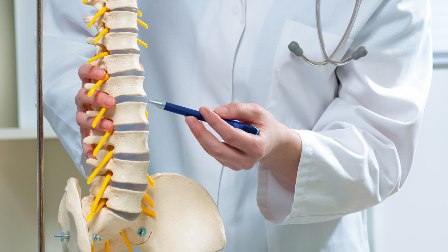 Chiropractic Care With Low Back Pain Relief