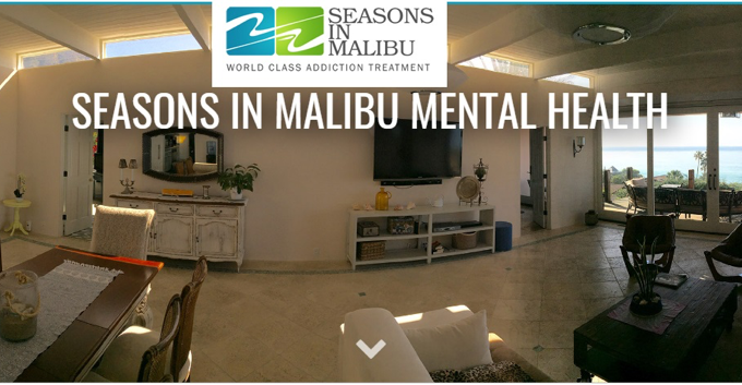 Are Rehab Services in Mental Health effective?