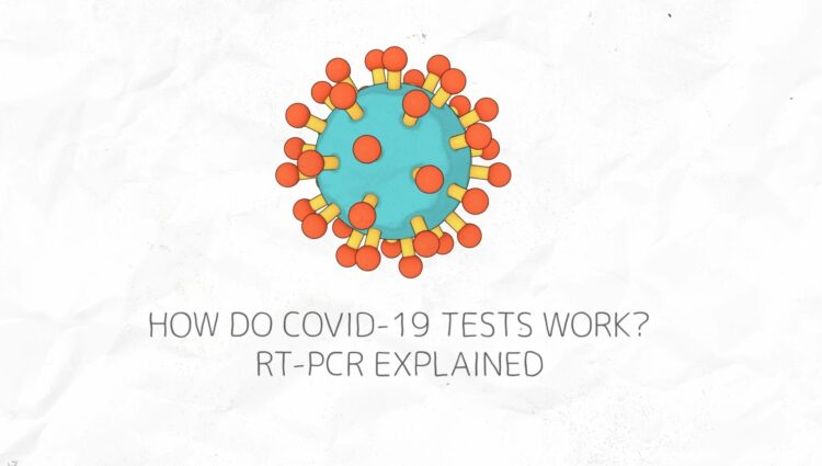 Rapid Covid Test: Explained science behind how it works to detect virus in our system
